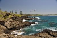 Kiama Coastline