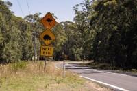 Kangaroo and Koala Signs