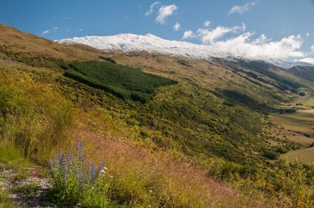 Coronet Peak from afar