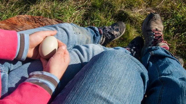 Daily Easter egg hunt