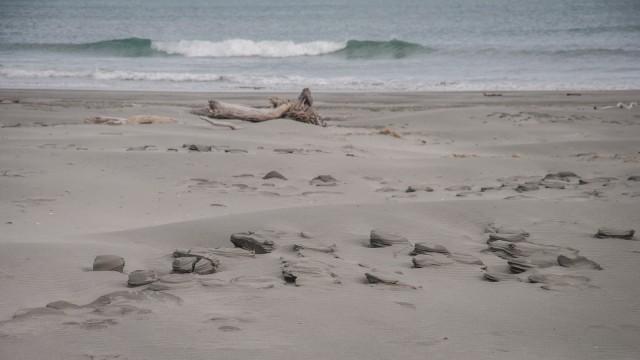 More sand sculptures