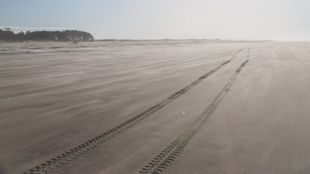 Driving a bus on loose sand is a risk