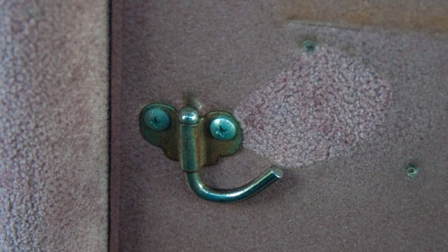Left-nosed elephant is staring at you