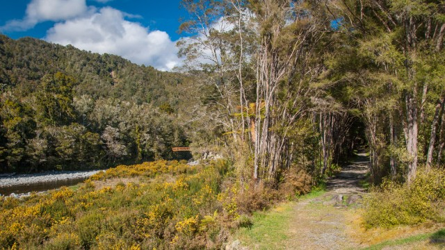 KM 1 on the Heaphy track