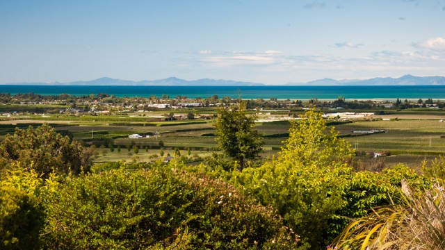 Motueka town between orchards and the sea