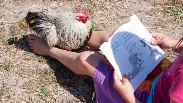 Reading to Gizmo