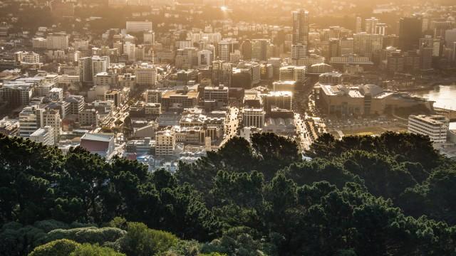 Inner city from above in setting sunlight.