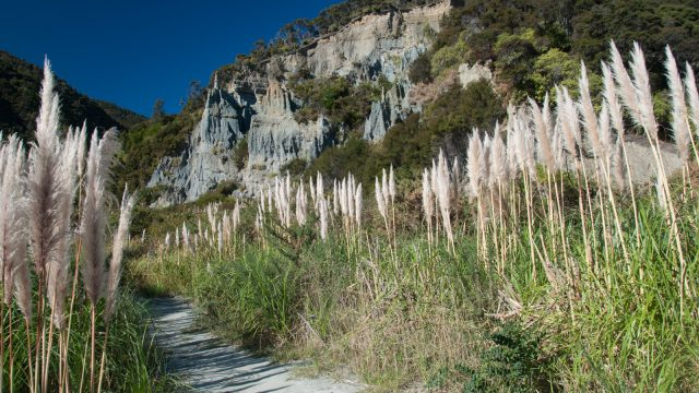 Putangirua Scenic Reserve: The gravels in the pinnacles are 12 million years old.