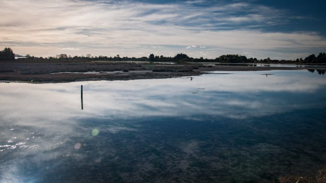 With the tide rolling in quickly, the endless mudflats are flooded and sparkle with light