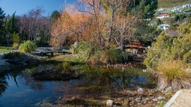 Soak boring thoughts in the magic pond