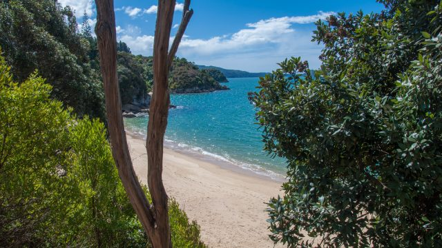 Park your car at Kaiteriteri Beach, walk further up the street, past Kaka Point, there's a small pedestrian path down to this hidden gem!
